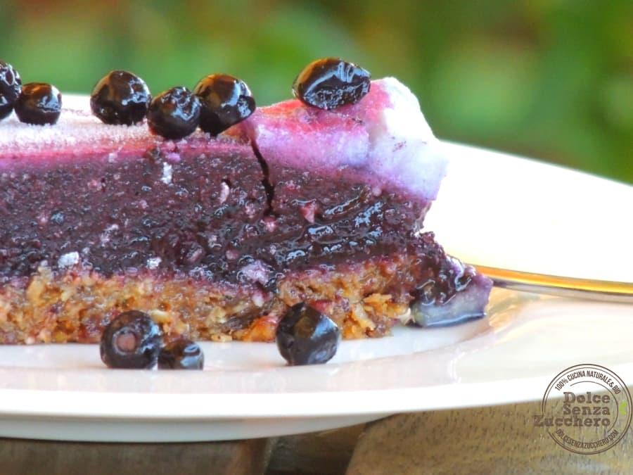 Torta Mirtilli e Frutta secca (2)