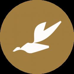 Creato per Dolce Senza Zucchero's Company logo